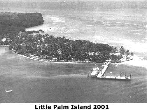 Little Palm In 2001